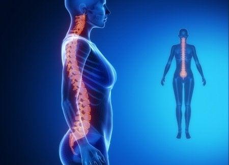 Auswirkungen von Stress: Schmerzen im unteren Rückenbereich