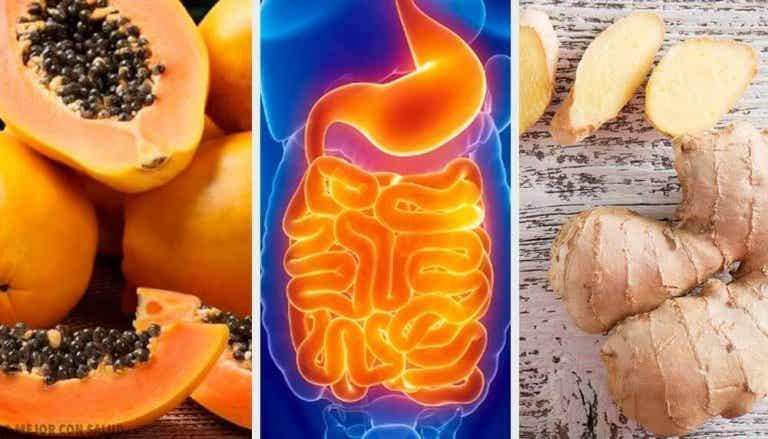 Früchte und Kräuter gegen unangenehme Verdauungsbeschwerden