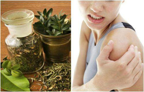 Selbstgemachte Kräutetinktur gegen Gelenkschmerzen
