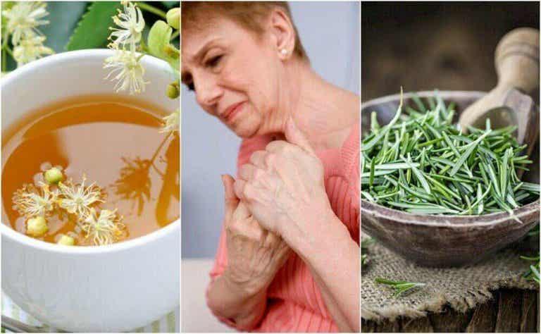 5 pflanzliche Heilmittel zur Behandlung von Arthritis