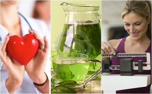6 Wichtige Vorteile von grünem Tee