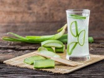 Aloe Vera Saft als natüliches Heilmittel gegen Sodbrennen