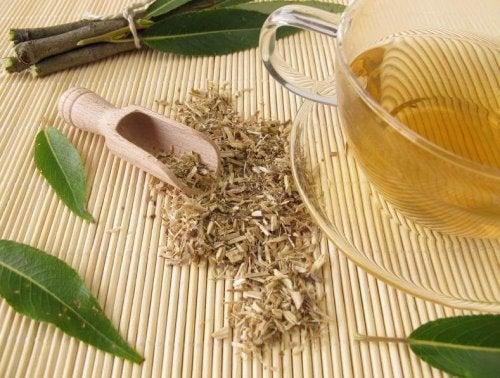 Behandlung von Arthritis mit Weidenrinde
