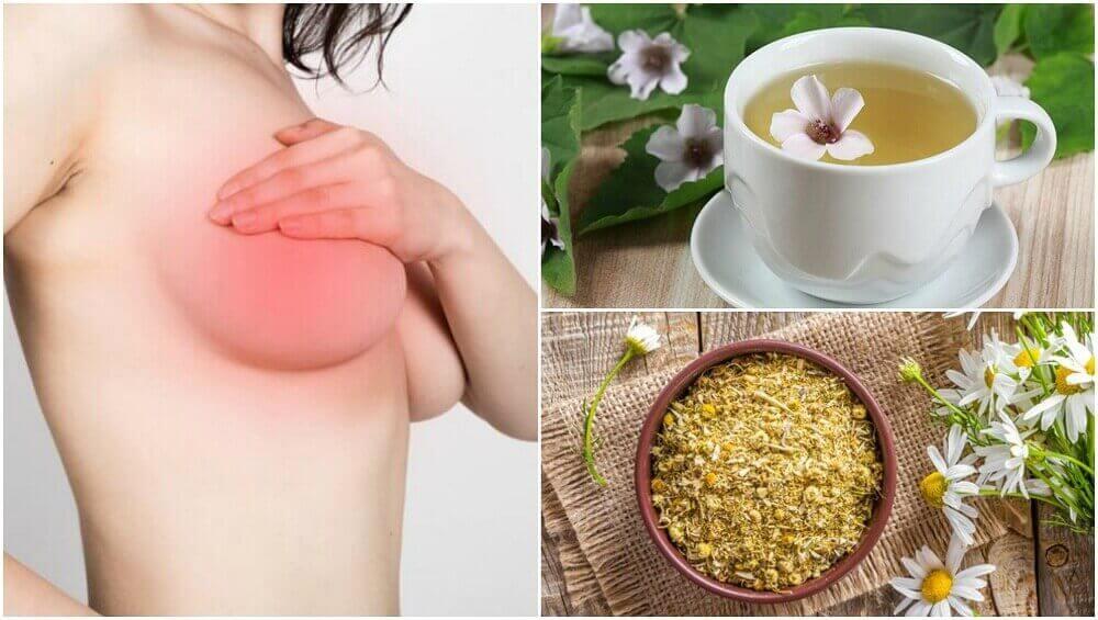 5 natürliche Heilmittel gegen Brustschmerzen bei Frauen