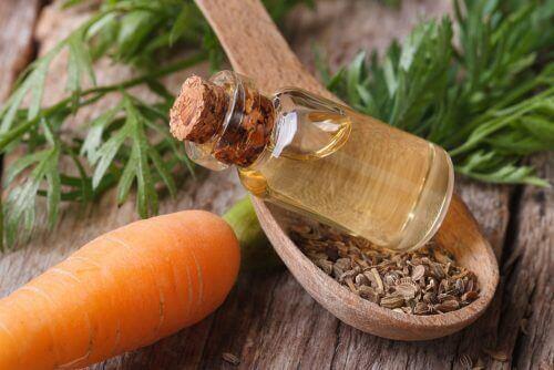 Karottenöl für gesundes Haar