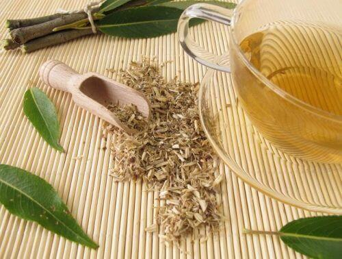 Weidenrindentee ist ein gutes Heilmittel gegen Arthritis-Schmerzen.