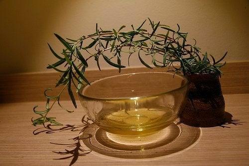 ätherische Öle für die Kosmetik - Teebaumöl