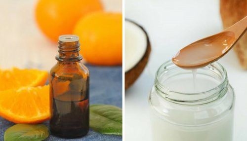 Kokos-Zitrus-Öl für gepflegte, weiche und reine Haut