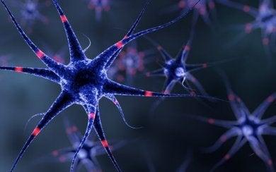 metallischer Geschmack - Nervensystem