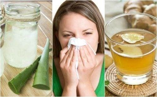 5 natürliche Heilmittel gegen allergischen Schnupfen