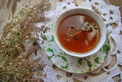 Die gesundheitlichen Vorteile von Thymiantee und wie du ihn trinken solltest
