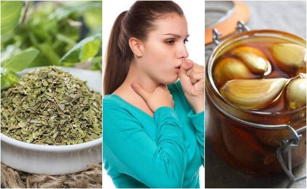 5 Naturheilmittel gegen Bronchitis