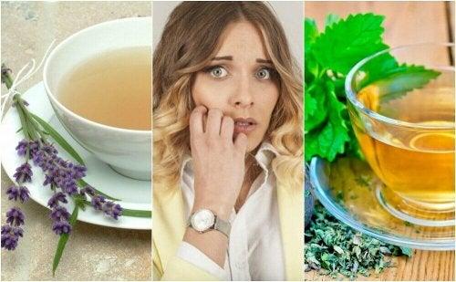 5 Naturheilmittel gegen Nervosität und innere Unruhe