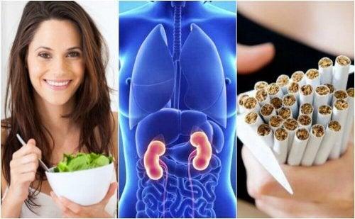 6 gesunde Verhaltensweisen zum Schutz deiner Nieren