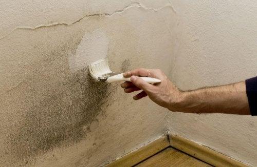 5 Effektive Tipps Gegen Feuchtigkeit In Der Wohnung