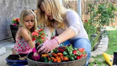 Blumen können deine Wohnung verschönern