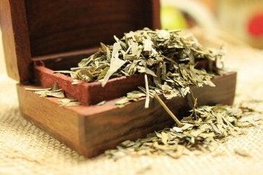 Gingko-Tee zum Muskelkrämpfe vorbeugen.