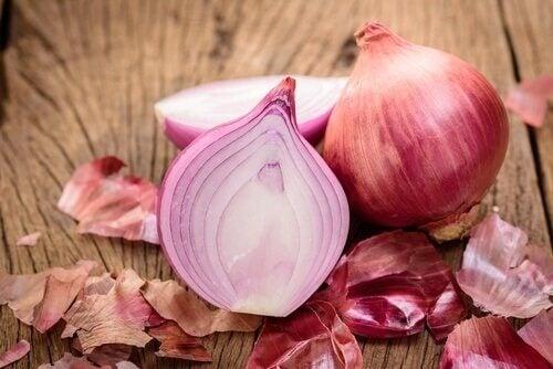 Lebensmittelo, die Kollagen spenden: Zwiebeln