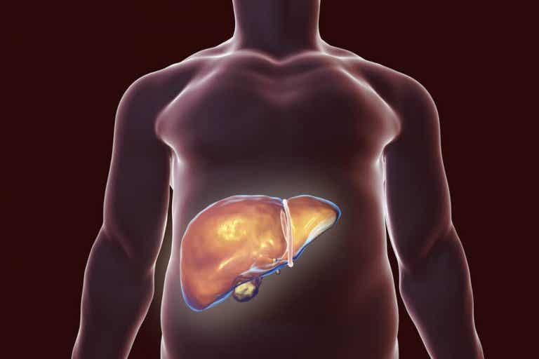 Natürliche Heilmittel zur Entgiftung der Leber