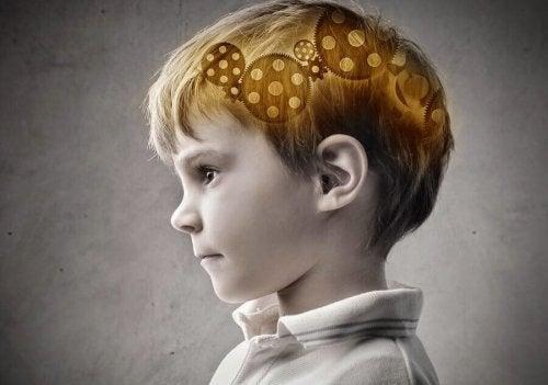 Welcher prozentuale Anteil der Intelligenz wird von der Mutter vererbt