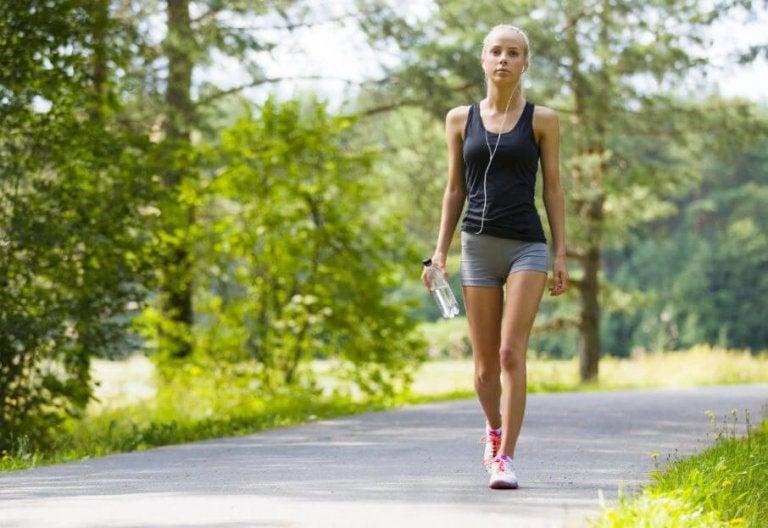 Welche Vorteile ein täglicher Spaziergang mit sich bringt