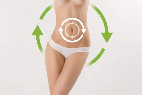 Den Stoffwechsel anregen und Pfunde verlieren