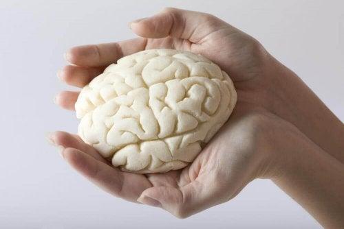 Fit im Kopf: 5 Gedächtnisübungen