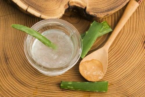 Hautpflege mit Aloe vera