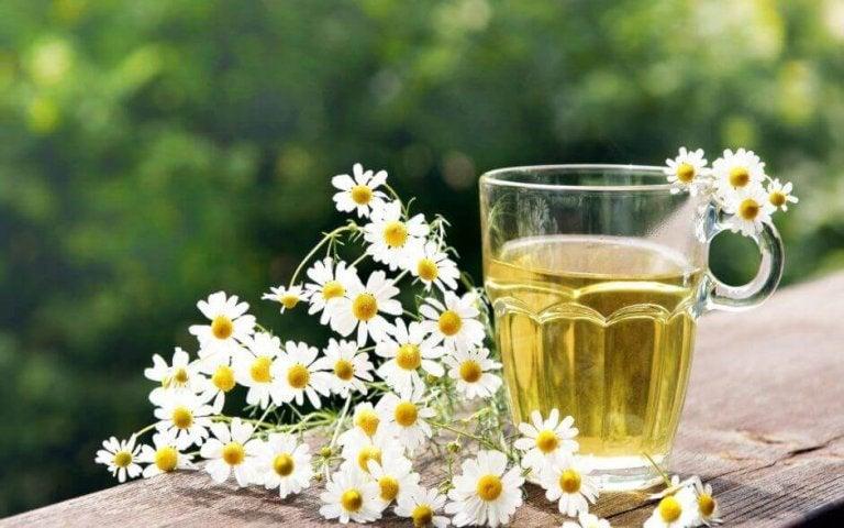 Einfache und natürliche Hausmittel mit Kamille