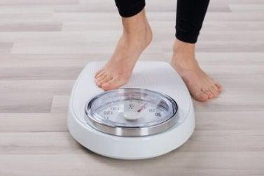 Lebensmittel, die bei der Gewichtskontrolle helfen