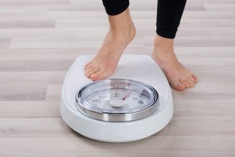 Papaya hilft bei der Gewichtsregulierung