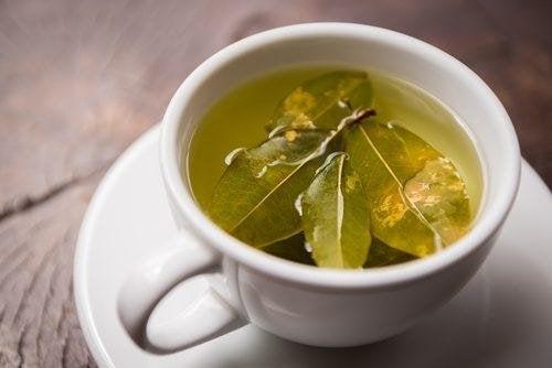 Tee aus Coca-Blättern heißt Mate