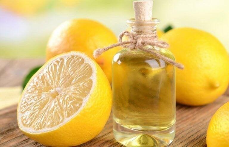 So kannst du selbst ätherisches Zitronenöl herstellen