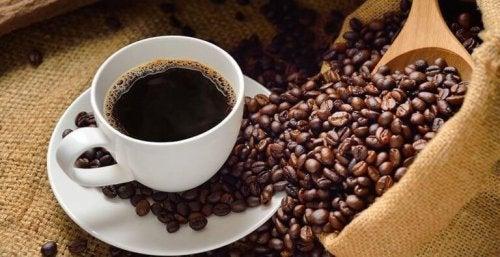 Leckere Kaffeerezepte für indischen Gewürzkaffee