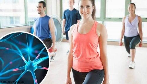 6 Tipps für ein gesundes und fittes Gehirn