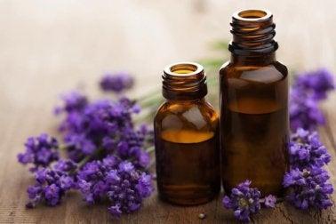 Lavendelöl als Heilmittel gegen Hallux Valgus