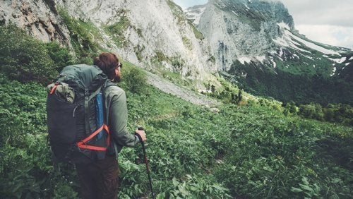 gesundes Herz durch Wandern