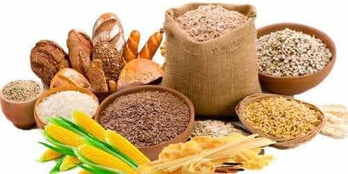 4 winterliche Lebensmittel, die dir beim Abnehmen helfen