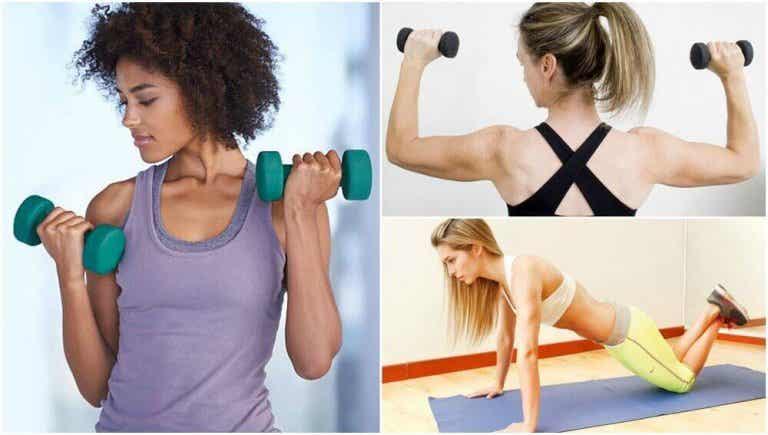 5 Übungen für trainierte Arme ohne Fitnessstudio