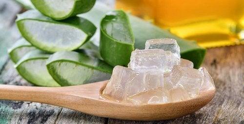Aloe Vera als natürliche Haarpflegemittel für deine Haare