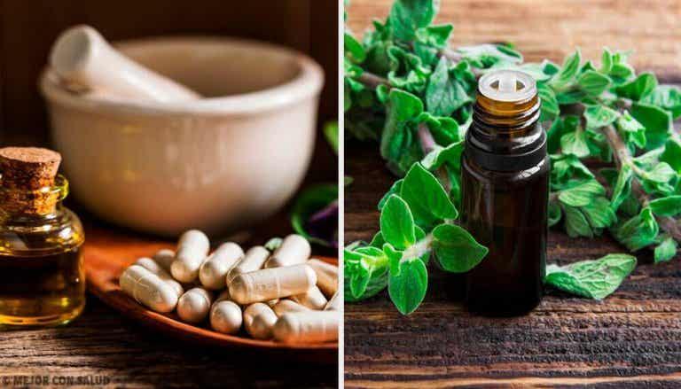 Natürliche Antibiotika für deine Gesundheit