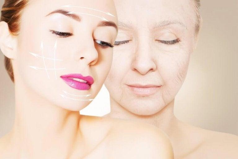 Fältchen im Gesicht: Bedeutung und Vorsorge