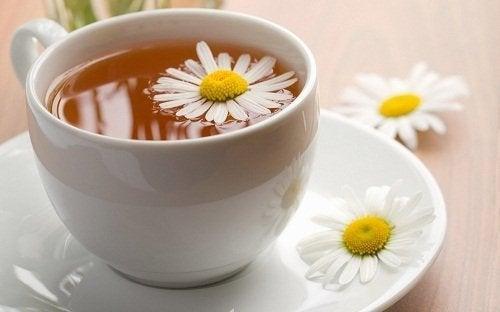 Kamillen Ingwer Tee gegen Blähungen