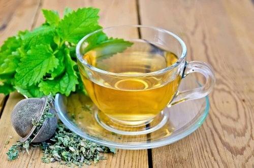Kräuter gegen Verdauungsbeschwerden entspannen
