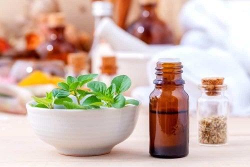 Oregano Öle als natürliche Antibiotika