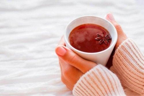 Tees gegen Verdauungsstörungen enthalten Anis