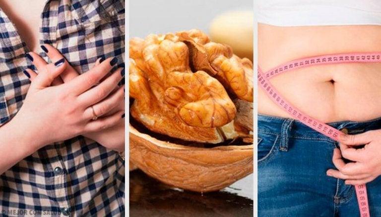 Trockenfrüchte und Nüsse: gesund zur Traumfigur