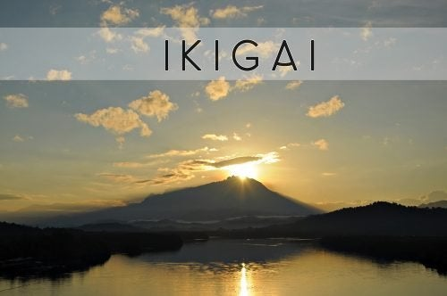 Die Suche nach Ikigai und gesundem Leben