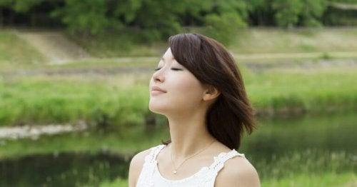 Die Suche nach Ikigai und dem glücklich sein