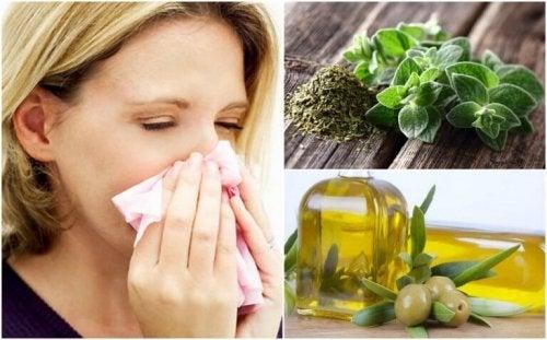 Mit Oregano und Olivenöl die Atemwege schützen
